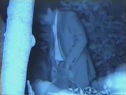 【エロ画像】夜の「青姦スポット」に赤外線カメラを仕込んだ結果wwwwwwww・3枚目