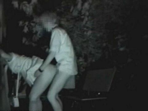 【エロ画像】夜の「青姦スポット」に赤外線カメラを仕込んだ結果wwwwwwww・30枚目