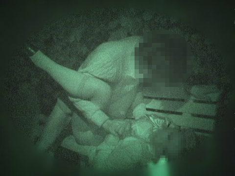 【エロ画像】夜の「青姦スポット」に赤外線カメラを仕込んだ結果wwwwwwww・31枚目