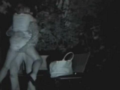 【エロ画像】夜の「青姦スポット」に赤外線カメラを仕込んだ結果wwwwwwww・32枚目