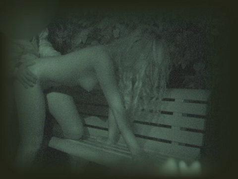 【エロ画像】夜の「青姦スポット」に赤外線カメラを仕込んだ結果wwwwwwww・4枚目