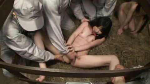 性奴隷にされてしまった女さん、買われてこうなる運命です。。これはヒドイ(エロ画像)・7枚目