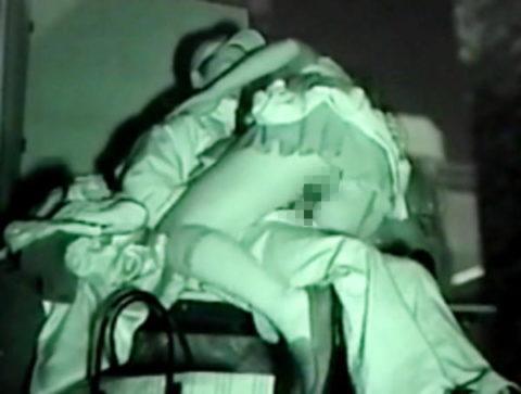 【エロ画像】夜の「青姦スポット」に赤外線カメラを仕込んだ結果wwwwwwww・9枚目