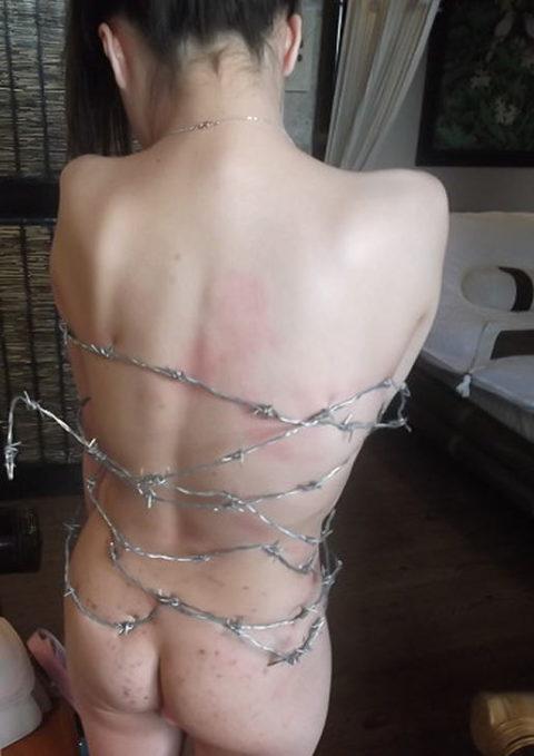 【調教】上級者の女しかできない有刺鉄線プレイがこちらです。。(エロ画像)・14枚目