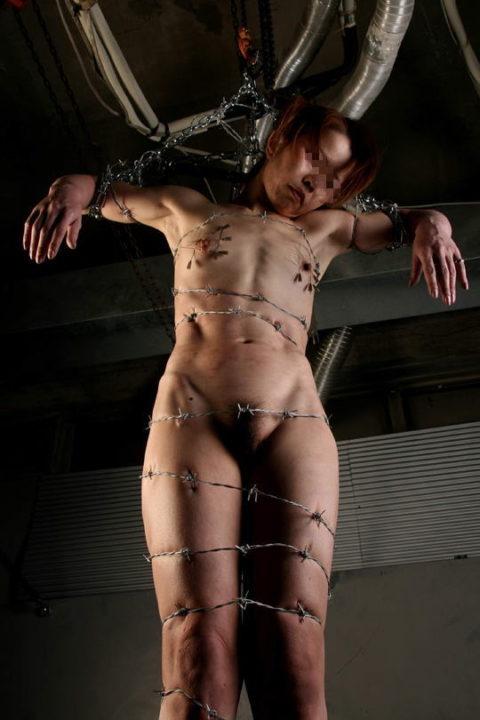 【調教】上級者の女しかできない有刺鉄線プレイがこちらです。。(エロ画像)・3枚目