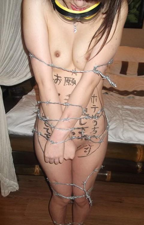 【調教】上級者の女しかできない有刺鉄線プレイがこちらです。。(エロ画像)・4枚目
