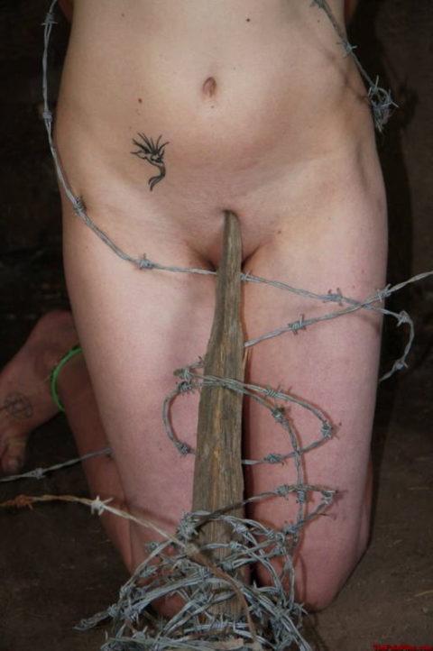 【調教】上級者の女しかできない有刺鉄線プレイがこちらです。。(エロ画像)・9枚目