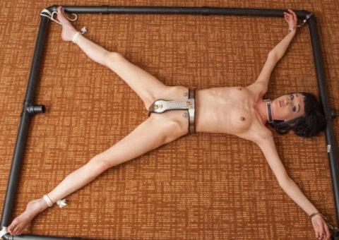 【エロ画像】どうしても性欲を抑えられない女に付ける器具がこちら。(貞操帯)・34枚目