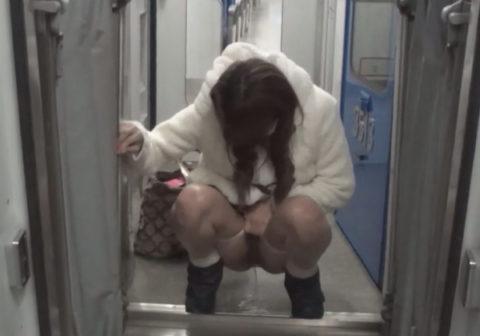 【AVエロ】電車内で「オシッコ」してるヤバすぎる作品・・・(エロ画像)・1枚目