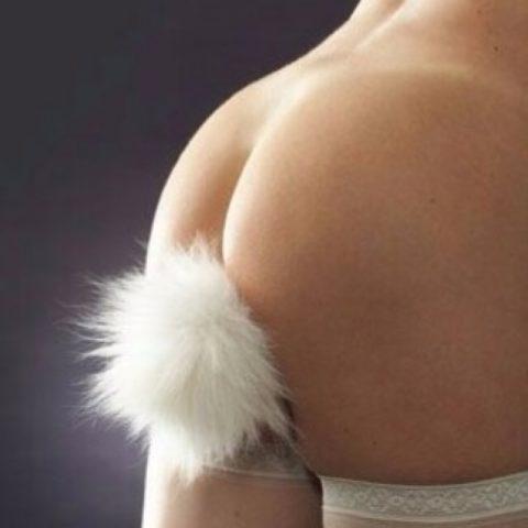 アナルプラグを「尻尾」にしてオシャレにしてみましたwwwww(エロ画像)・10枚目