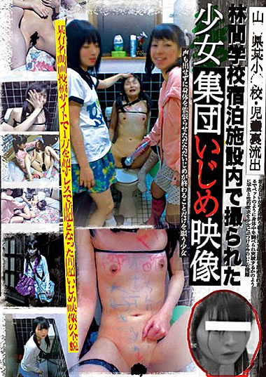 女の子同士のイジメ案件。性的にやったらアカン絶対に・・・(画像あり)・1枚目
