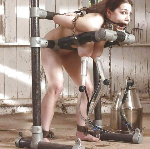 【爆乳】もう牛扱いされた女性たちの家畜プレイがヤバいwwwwww・16枚目