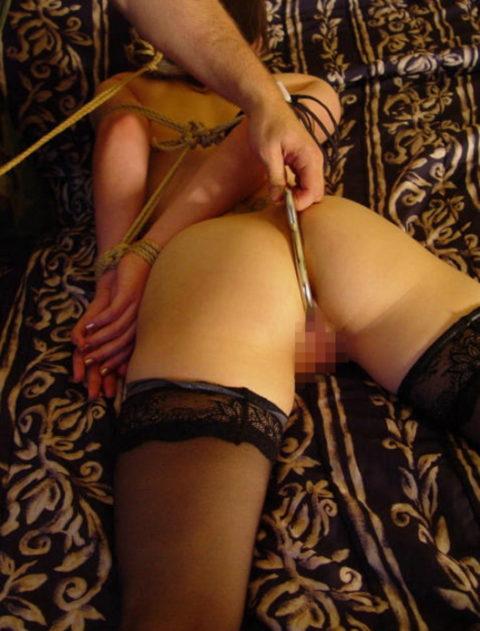 ケツの穴にフックを引っ掛けて拷問する方法が殺人的すぎる件・・・(エロ画像)・13枚目