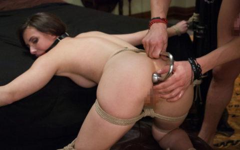 ケツの穴にフックを引っ掛けて拷問する方法が殺人的すぎる件・・・(エロ画像)・18枚目