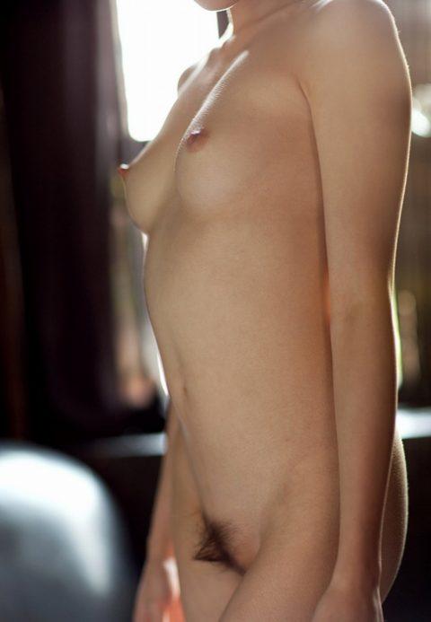 【おっぱい】エロい乳房をA~Gまでまとめた結果。図鑑みたいになるwwwwww・11枚目