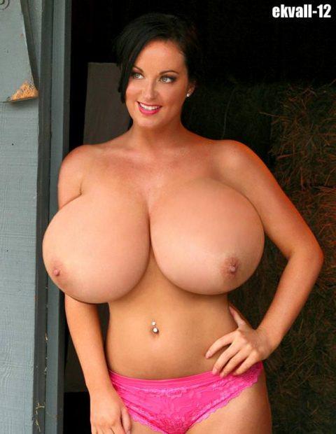 【おっぱい】エロい乳房をジャンル別に集めたエロ画像まとめ。(236枚)・208枚目