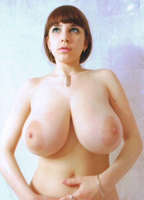 【おっぱい】エロい乳房をジャンル別に集めたエロ画像まとめ。(236枚)・229枚目