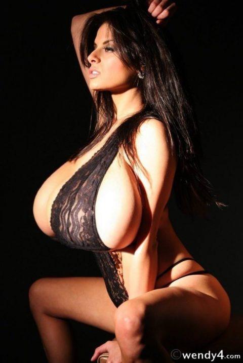 【おっぱい】エロい乳房をジャンル別に集めたエロ画像まとめ。(236枚)・233枚目